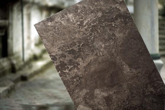 Fossil (Seranit)